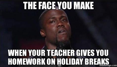 holiday-homework